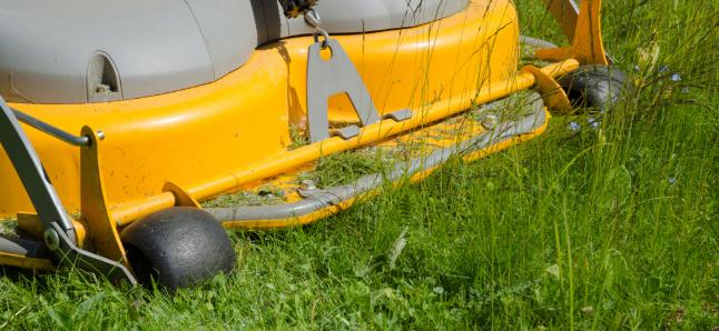 lawn-mower-ready.jpg